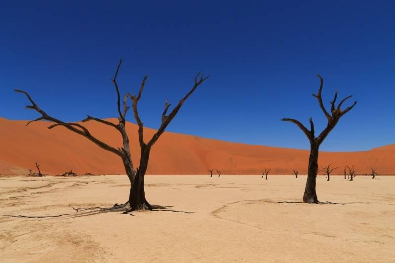 Namib Nauklaft National Park